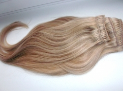 Brazilian Remy Hair 60nr+10nr ― HairSee